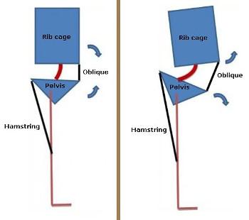 Šema istezanja mišića zadnje lože