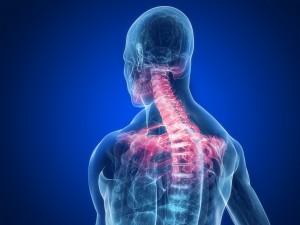 bolovi u vratu