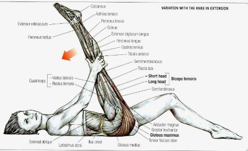 Istezanje mišića zadnje lože - podizanjem noge